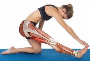 Effetti degli agenti termici e dell'attività fisica sulla rigidità tendineo-muscolare ed effetti combinati con lo stretching statico.