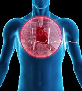 Anche un'analisi ultra corta della variabilità cardiaca risulta essere sensibile agli effetti dell'allenamento in giocatori di sport di squadra