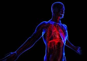 Un'intensità decrescente aumenta il contributo aerobico durante esercizio intermittente a basso volume e alta intensità