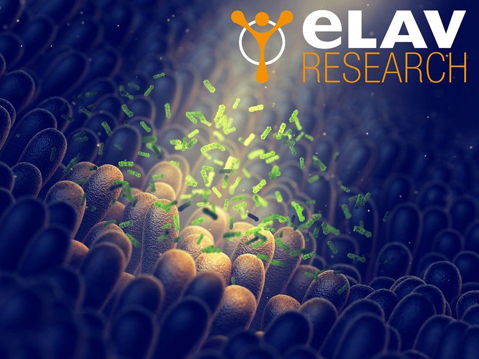 Allenamento e Microbiota Intestinale: Metodologie a Confronto