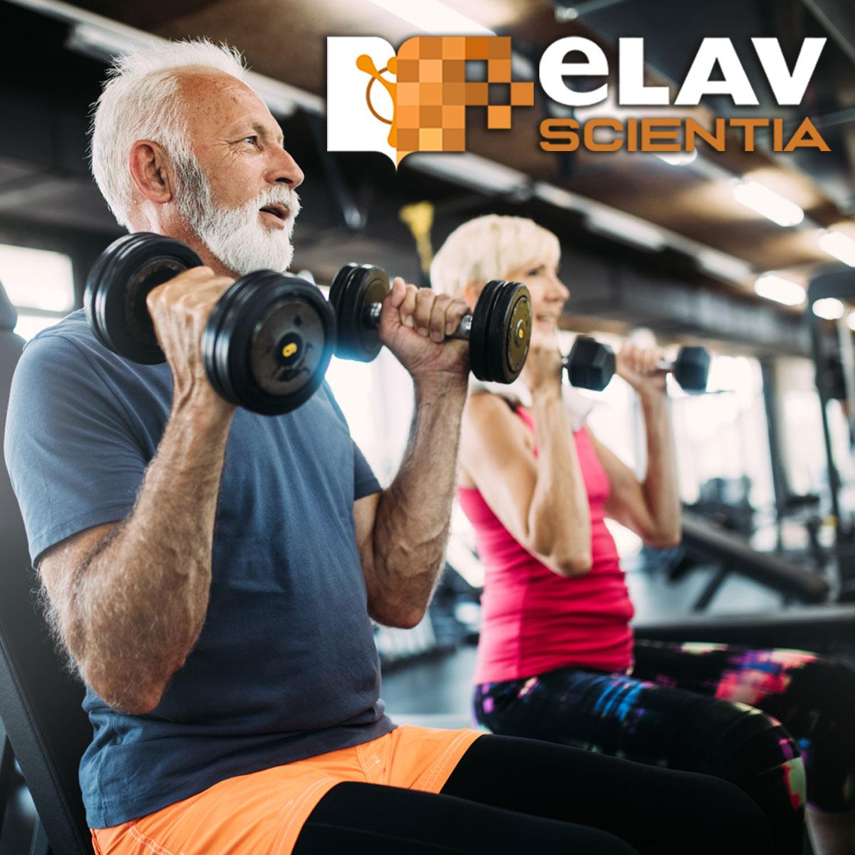 Effetti Dell'allenamento Con I Sovraccarichi Sulla Forza E L'ipertrofia In Soggetti Anziani