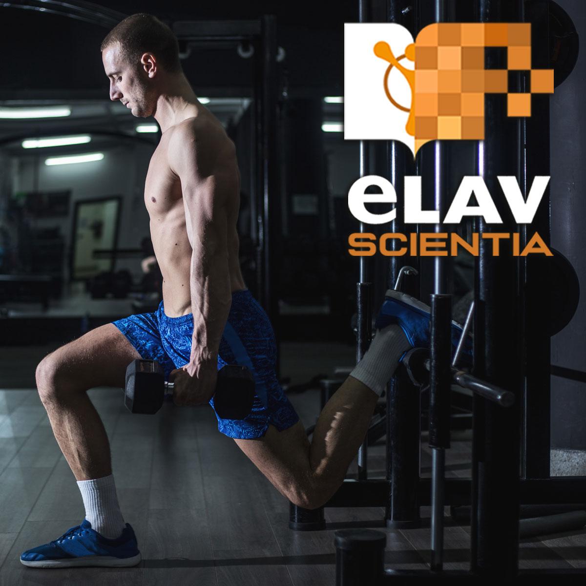 Lo Split Squat con piede posteriore rialzato (Bulgarian Squat) è un esercizio unilaterale? Un'indagine sulle esigenze cinetiche e cinematiche