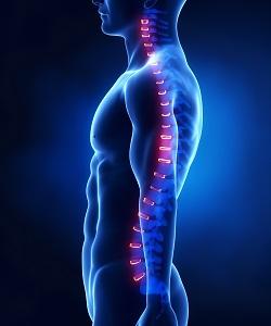L'allenamento respiratorio ha effetti sugli stimoli propriocettivi del rachide e sulla lombalgia