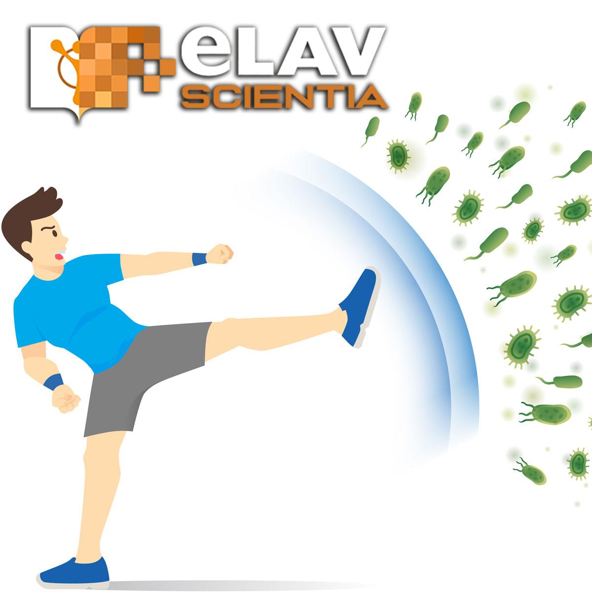 Lo Sport E L'attività Fisica Devono Fare Parte Dei Piani Di Recupero Post-Covid-19, Dicono I Governi