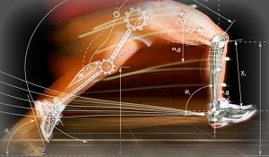Braccia e testa sono necessarie a stimare con precisione i movimenti del centro di massa durante la corsa?