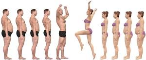 Effetto delle competenze motorie, delle capacità cardiorespiratorie e dell'attività fisica sul grasso corporeo