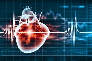Alte capacità cardio-respiratorie riducono il declino della frequenza cardiaca massima con l'invecchiamento