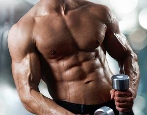 La supplementazione aminoacidica durante allenamento con sovraccarichi mantiene la massa magra anche con una dieta a restrizione calorica.
