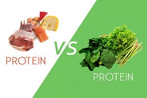 Diete isocaloriche ricche di proteine animali o vegetali riducono il grasso del fegato e l'infiammazione in soggetti con diabete di Tipo2.