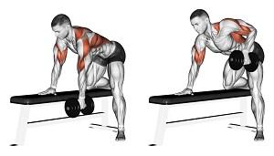 Gli effetti di diverse modalità di rematore eseguito mono- o bilaterale, sull'attivazione dei muscoli del core