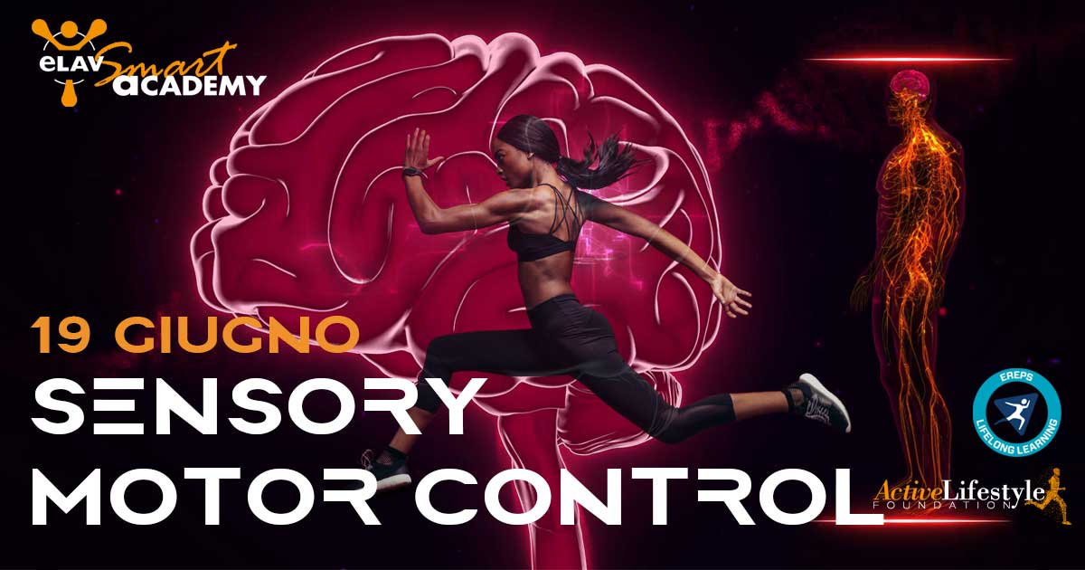 smart-academy-sensory-motor-control